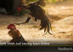Arti Dibalik Istilah Judi Sabung Ayam Online
