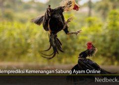 Cara Memprediksi Kemenangan Sabung Ayam Online