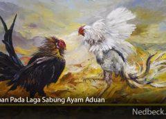 Tahapan Pada Laga Sabung Ayam Aduan