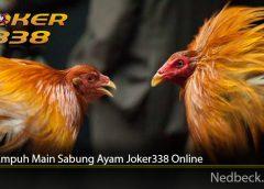 Cara Ampuh Main Sabung Ayam Joker338 Online